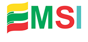 EMSI logo refusbished
